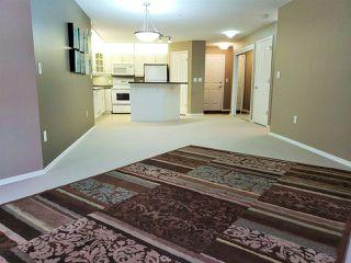 Photo 4: 212 10308 114 Street in Edmonton: Zone 12 Condo for sale : MLS®# E4221887