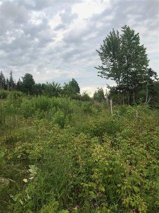 Photo 3: 0000 Eskasoni Road in Island View: 207-C. B. County Vacant Land for sale (Cape Breton)  : MLS®# 201917855