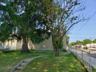 Photo 10: 11450 84 Street in Edmonton: Zone 05 House for sale : MLS®# E4170699