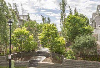 Photo 15: 55 3075 TRELLE Crescent in Edmonton: Zone 14 Townhouse for sale : MLS®# E4204178