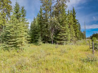Photo 8: 4-34364 RANGE ROAD 42 in : Rural Mountain View County Land for sale (Mountain View)