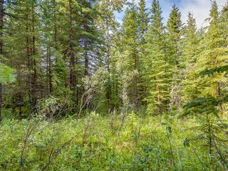 Photo 9: 4-34364 RANGE ROAD 42 in : Rural Mountain View County Land for sale (Mountain View)