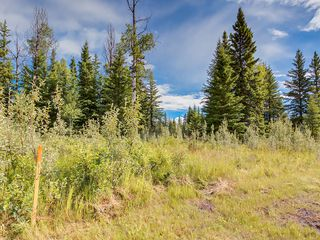 Photo 11: 4-34364 RANGE ROAD 42 in : Rural Mountain View County Land for sale (Mountain View)