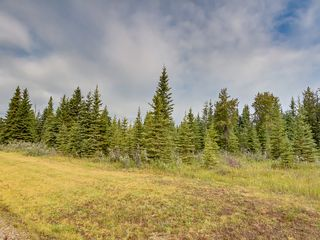 Photo 13: 4-34364 RANGE ROAD 42 in : Rural Mountain View County Land for sale (Mountain View)