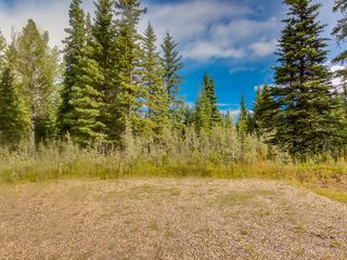 Photo 12: 4-34364 RANGE ROAD 42 in : Rural Mountain View County Land for sale (Mountain View)