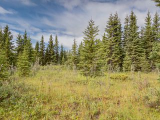 Photo 5: 4-34364 RANGE ROAD 42 in : Rural Mountain View County Land for sale (Mountain View)