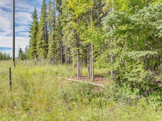 Photo 10: 4-34364 RANGE ROAD 42 in : Rural Mountain View County Land for sale (Mountain View)
