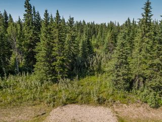 Photo 3: 4-34364 RANGE ROAD 42 in : Rural Mountain View County Land for sale (Mountain View)