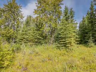 Photo 7: 4-34364 RANGE ROAD 42 in : Rural Mountain View County Land for sale (Mountain View)