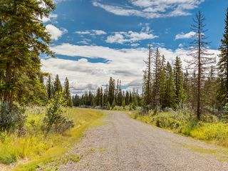 Photo 28: 4-34364 RANGE ROAD 42 in : Rural Mountain View County Land for sale (Mountain View)