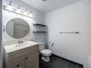Photo 8: 1020W 39 Avenue NW in Calgary: Cambrian Heights Semi Detached for sale : MLS®# A1025366