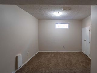 Photo 17: 1020W 39 Avenue NW in Calgary: Cambrian Heights Semi Detached for sale : MLS®# A1025366