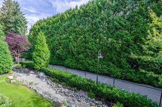 "Photo 16: 212 15185 36 Avenue in Surrey: Morgan Creek Condo for sale in ""Edgewater"" (South Surrey White Rock)  : MLS®# R2499537"