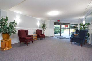 Photo 3: 306 1525 Hillside Ave in : Vi Oaklands Condo for sale (Victoria)  : MLS®# 860507