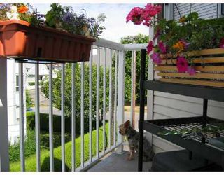Photo 7: 305 1928 11TH Ave in Vancouver East: Home for sale : MLS®# V697802