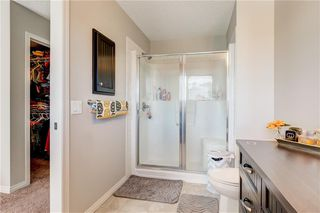 Photo 20: 96 COPPERSTONE Drive SE in Calgary: Copperfield Detached for sale : MLS®# C4303623