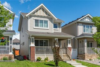Photo 33: 96 COPPERSTONE Drive SE in Calgary: Copperfield Detached for sale : MLS®# C4303623