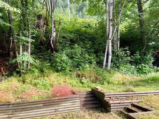 """Photo 25: 45 1650 COLUMBIA VALLEY Road: Columbia Valley Land for sale in """"LEISURE VALLEY"""" (Cultus Lake)  : MLS®# R2472797"""