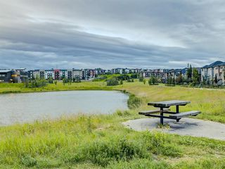 Photo 50: 6 SAGE MEADOWS Way NW in Calgary: Sage Hill Detached for sale : MLS®# A1009995