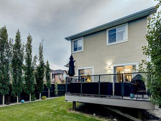 Photo 42: 6 SAGE MEADOWS Way NW in Calgary: Sage Hill Detached for sale : MLS®# A1009995