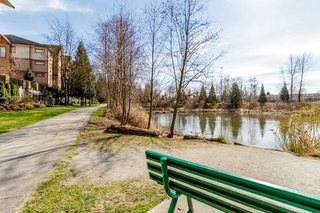 "Photo 34: 203 12565 190A Street in Pitt Meadows: Mid Meadows Condo for sale in ""CEDAR DOWNS"" : MLS®# R2483891"