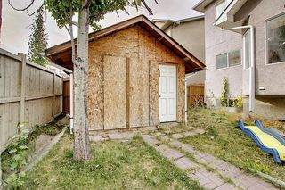 Photo 45: 11 SHERWOOD Grove NW in Calgary: Sherwood Detached for sale : MLS®# A1036541