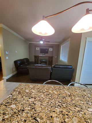 Photo 5: 10155 128A Street in Surrey: Cedar Hills House for sale (North Surrey)  : MLS®# R2519018