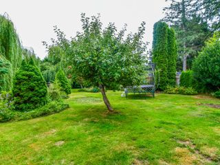 Photo 46: 623 Holm Rd in CAMPBELL RIVER: CR Willow Point House for sale (Campbell River)  : MLS®# 820499