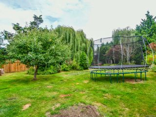 Photo 47: 623 Holm Rd in CAMPBELL RIVER: CR Willow Point House for sale (Campbell River)  : MLS®# 820499