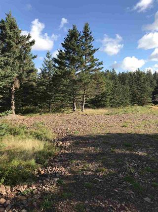 Photo 6: LOT 3 Armstrong Road in Ogilvie: 404-Kings County Vacant Land for sale (Annapolis Valley)  : MLS®# 201924154