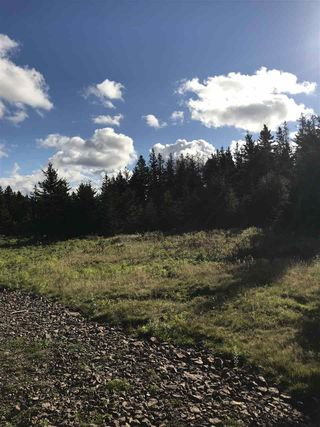 Photo 7: LOT 3 Armstrong Road in Ogilvie: 404-Kings County Vacant Land for sale (Annapolis Valley)  : MLS®# 201924154