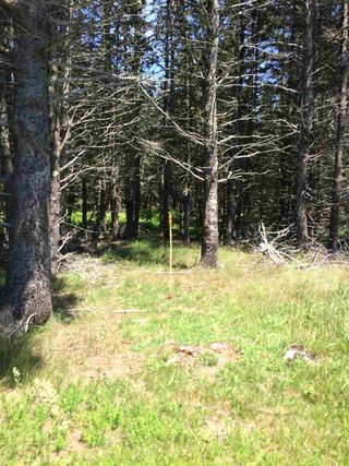Photo 5: LOT 3 Armstrong Road in Ogilvie: 404-Kings County Vacant Land for sale (Annapolis Valley)  : MLS®# 201924154
