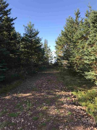 Photo 10: LOT 3 Armstrong Road in Ogilvie: 404-Kings County Vacant Land for sale (Annapolis Valley)  : MLS®# 201924154