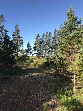 Photo 11: LOT 3 Armstrong Road in Ogilvie: 404-Kings County Vacant Land for sale (Annapolis Valley)  : MLS®# 201924154