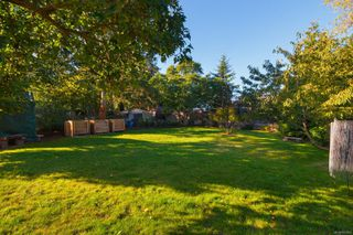 Photo 54: 1314 Balmoral Rd in : Vi Fernwood House for sale (Victoria)  : MLS®# 857803