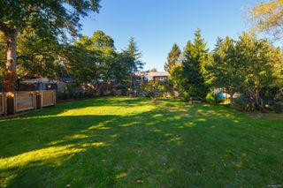 Photo 55: 1314 Balmoral Rd in : Vi Fernwood House for sale (Victoria)  : MLS®# 857803