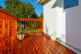 Photo 50: 1314 Balmoral Rd in : Vi Fernwood House for sale (Victoria)  : MLS®# 857803