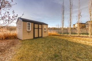 Photo 41: 165 KINCORA GLEN Rise NW in Calgary: Kincora Detached for sale : MLS®# A1045734