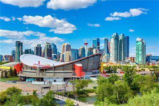 Photo 27: 1802 RAMSAY Street SE in Calgary: Ramsay Detached for sale : MLS®# C4269757