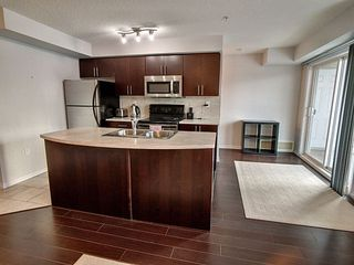 Photo 9: 316 10118 106 Avenue in Edmonton: Zone 08 Condo for sale : MLS®# E4203918