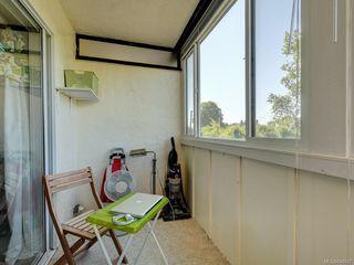 Photo 14: 203 1012 Pakington St in Victoria: Vi Fairfield West Condo for sale : MLS®# 840697