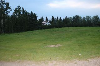 Main Photo: ON Princess Street: Elnora Land for sale : MLS®# A1022937