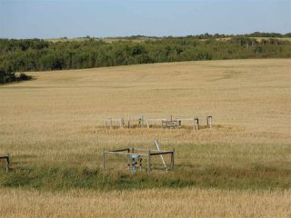 Photo 11: Twp 424 RR 92: Rural Provost M.D. Rural Land/Vacant Lot for sale : MLS®# E4170013