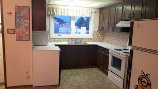 Photo 5: 14311 87 Street NW in Edmonton: Zone 02 House for sale : MLS®# E4185059