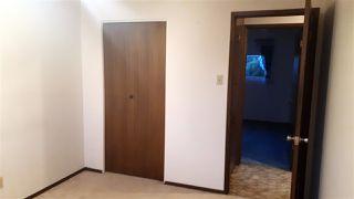 Photo 12: 14311 87 Street NW in Edmonton: Zone 02 House for sale : MLS®# E4185059
