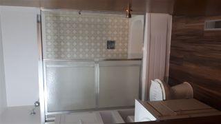 Photo 8: 14311 87 Street NW in Edmonton: Zone 02 House for sale : MLS®# E4185059