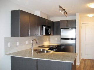"Photo 3: 403 8915 202 Street in Langley: Walnut Grove Condo for sale in ""HAWTHORNE"" : MLS®# R2441253"