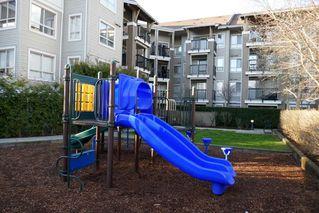 "Photo 11: 403 8915 202 Street in Langley: Walnut Grove Condo for sale in ""HAWTHORNE"" : MLS®# R2441253"