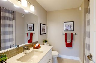 Photo 29: : Sherwood Park House for sale : MLS®# E4195147