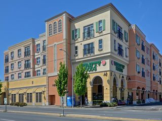Photo 1: 309 1620 McKenzie Ave in Saanich: SE Lambrick Park Condo Apartment for sale (Saanich East)  : MLS®# 840284